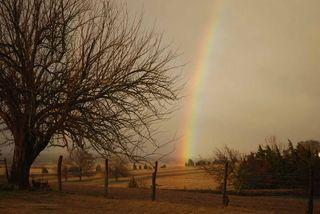 Rainbowmar8