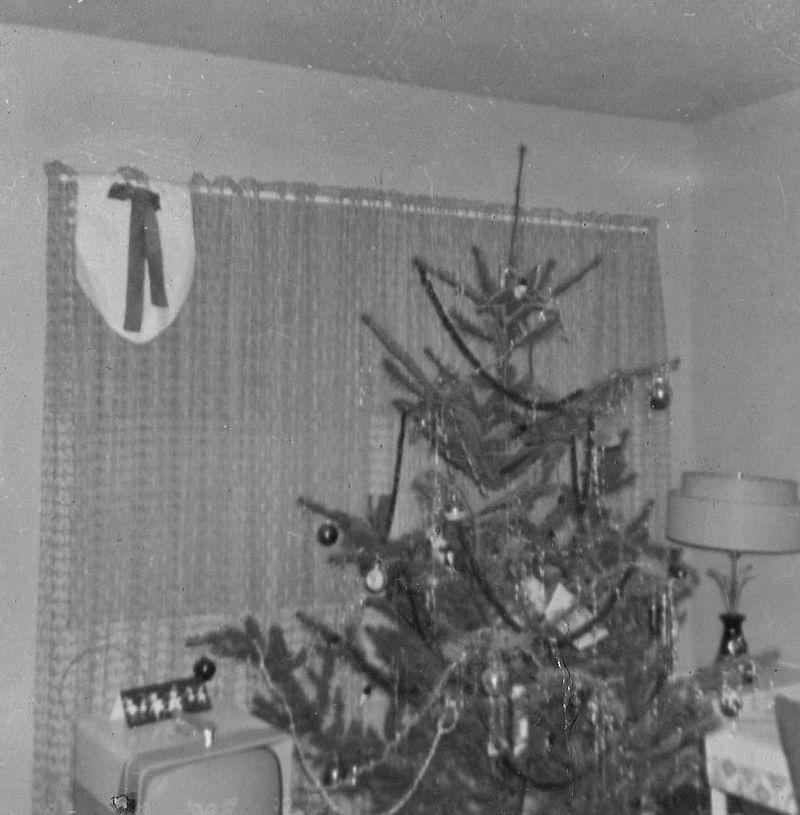 Tree1962