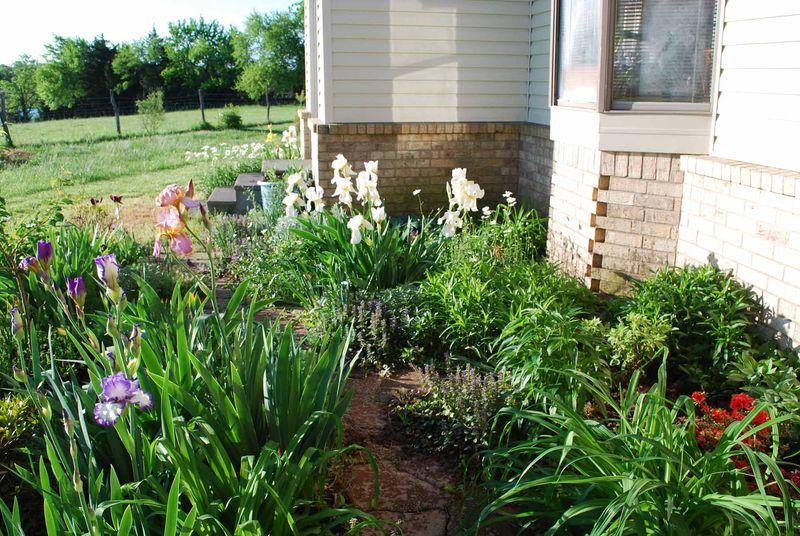 East flowerbedAp25
