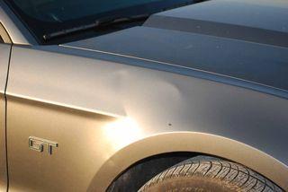 Mustangdamage