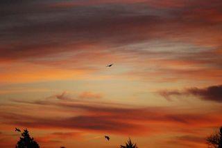 SunriseDec21b