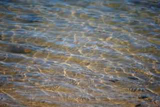 WaterFeb13d
