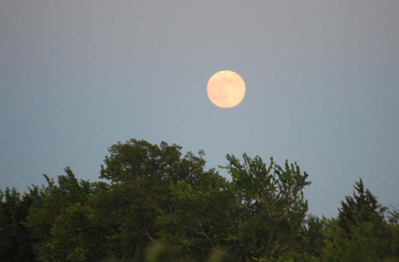 MoonAug13