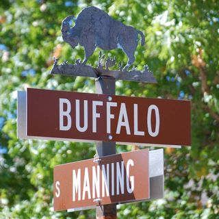 Buffalosign