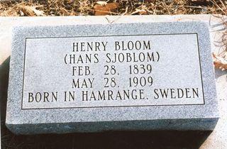 Bloom, Henry