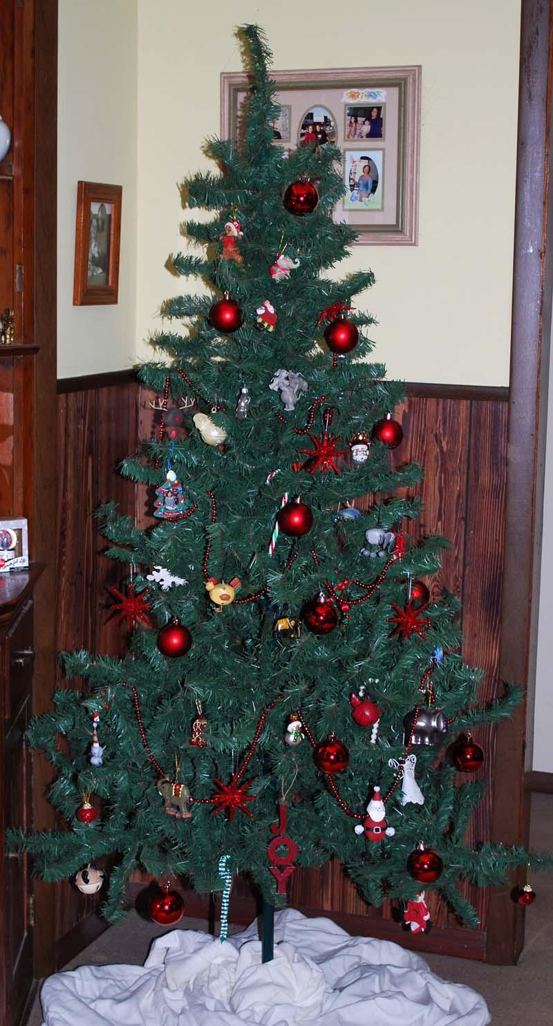 Tree2011
