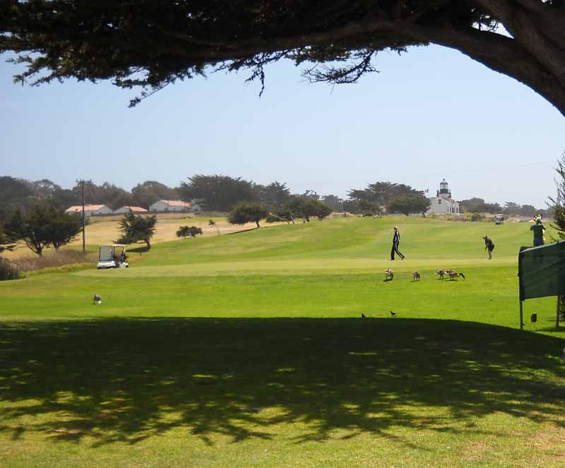 Golfthree