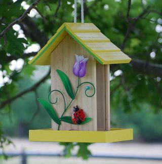 BirdhouseMay17
