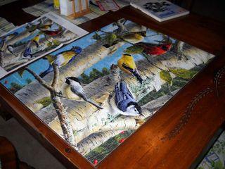 BirdpuzzleMarch