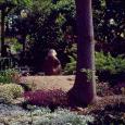 Duncan gardens4