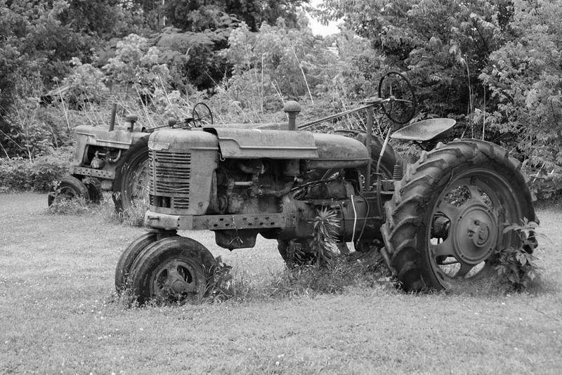 TractorsMay24a_edited-1