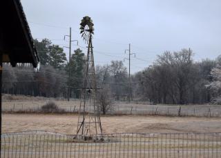 Windmill21