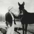 Williamsdonkey1954