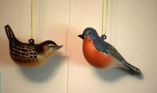 Birdorn