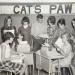 Catspaw staff