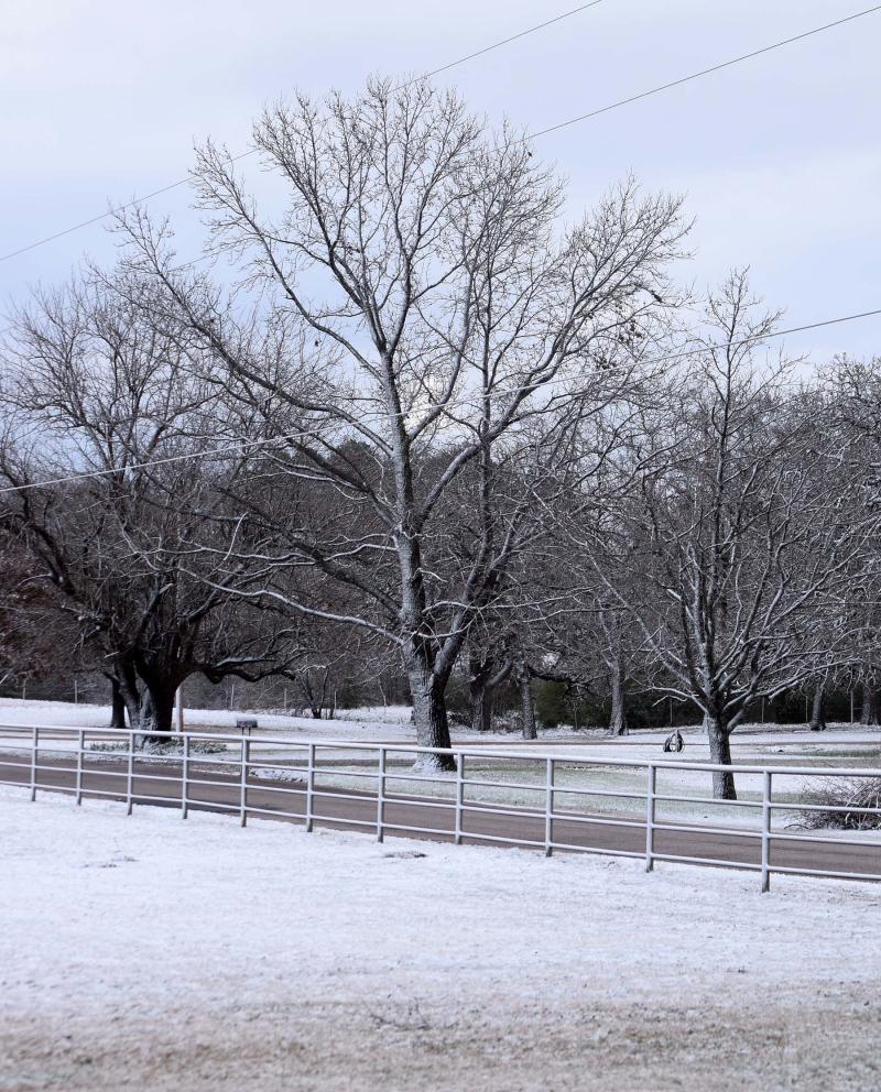 Snow19f