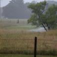 Rain16e