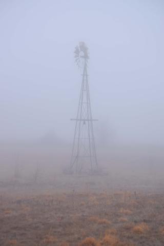 Fog27b