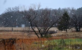 Snow13c
